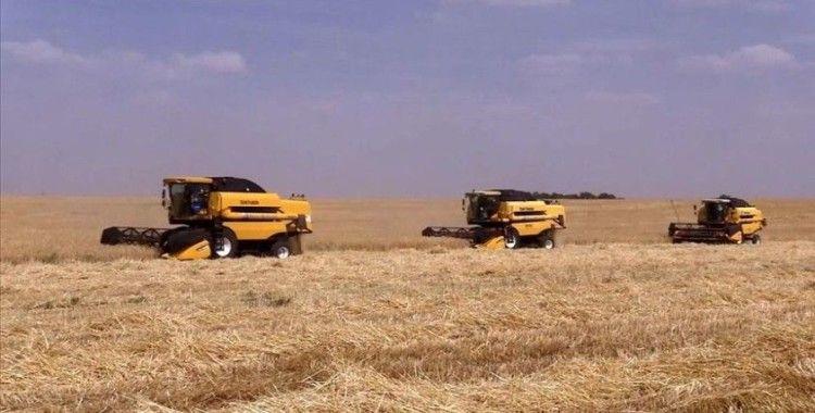 GAP bölgesi ülkenin gıda üssü olacak