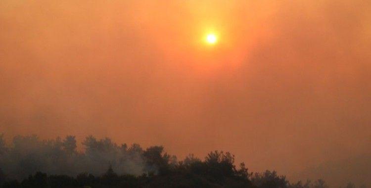 Manisa'daki orman yangını yeniden başladı