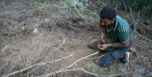 Suriyeli Hasan el-Hasan, İzmir'deki yangını söndürmek için avuçlarıyla toprak taşıdı