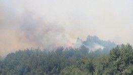 Ege yangınlarla boğuşuyor