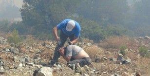 Orman yangınıyla mücadelede ekipler canla başla çalışıyor
