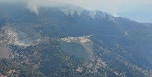 Aydın'da başlayıp Muğla'ya kadar ulaşan orman yangınını söndürme çalışmaları sürüyor