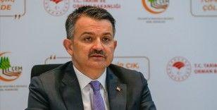 Bakan Pakdemirli: 'Uşak, İzmir, Denizli ve Bursa'daki yangınlar kontrol altına alındı'
