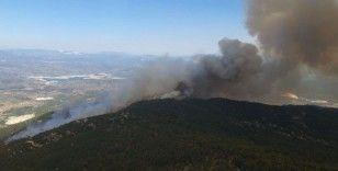 24 saatte kontrol altına alındı, 20 hektar alan zarar gördü