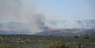 Ayvacık'taki yangın kontrol altına alındı