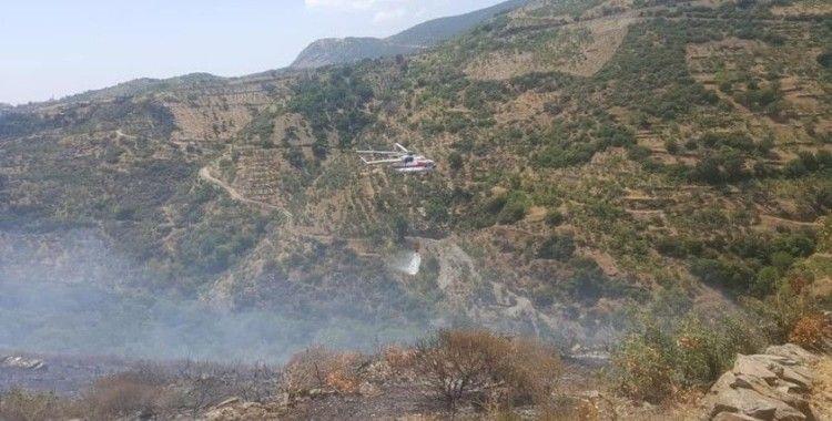 Köşk'te 10 dönüm makilik alan yandı