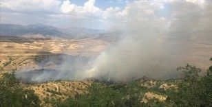Siirt'te ormanlık alanda yangın çıktı