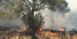 İtfaiye Daire Başkanı Adanır; 'Yangın söndürme ve soğutma çalışmaları sürüyor'
