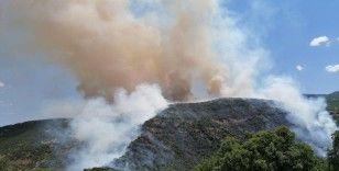 Elazığ'daki orman yangını kontrol altına alınmaya çalışılıyor