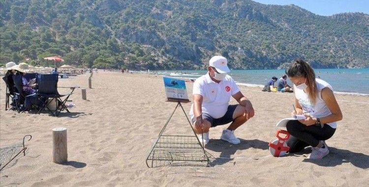 İztuzu Plajı'nda 744 caretta caretta yuvasıyla rekor kırıldı