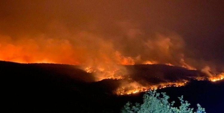Bulgaristan'daki orman yangını Türkiye sınırına ulaştı