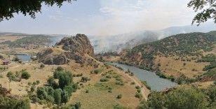 Elazığ'da ki orman yangını söndürüldü, 150 dönüm alan zarar gördü