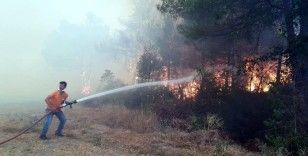 Sakarya'da ormanlık alanda çıkan yangında dumanlar gökyüzünü kapladı