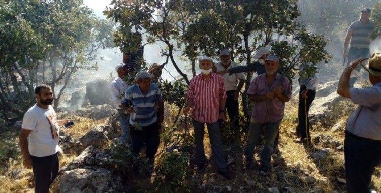 Kulp'ta orman yangını vatandaş, itfaiye ve güvenlik kuvvetleri tarafından söndürdü