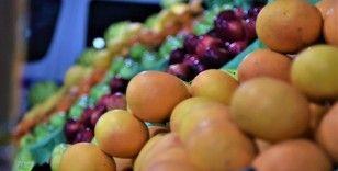 Yaş meyve sebze ihracatına Doğu Akdeniz 'damgası'