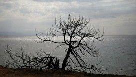 İtalya'da şiddetli rüzgarın devirdiği ağaç 2 kız çocuğunun ölümüne neden oldu