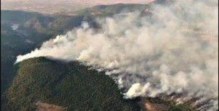 Denizli'deki orman yangını geniş bir alanda devam ediyor