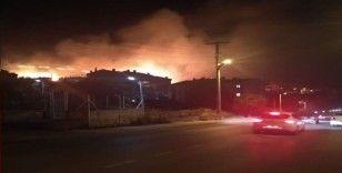 Armutlu'daki yangında soğutma çalışmaları başlatıldı