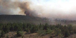 Tarım ve Orman Bakanı Pakdemirli: Denizli'nin Çardak ilçesindeki yangın tamamen kontrol altına alındı