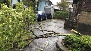 Haishen Tayfunu Japonya'da hayatı felç etti