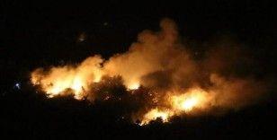Kozan'daki orman yangını söndürüldü
