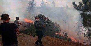3 hektar ormanlık alan yandı