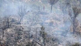 Antalya'da çıkan orman yangınında 5 hektar alan zarar gördü