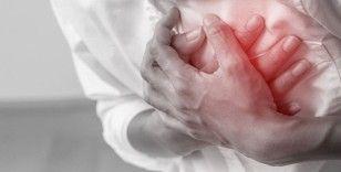 Direksiyon başında kalp krizi geçirip yoldan çıkan sürücü hayatını kaybetti