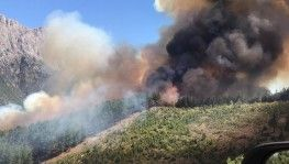 Pozantı'da orman yangını