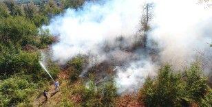 Sinop Erfelek'te orman yangını