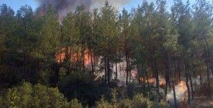 Muğla'da çıkan dördüncü orman yangını da kontrol altına alındı