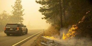 ABD'deki orman yangınlarında ölü sayısı 23'e yükseldi