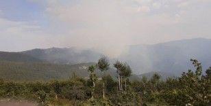 Amanoslarda orman yangını