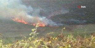 Arnavutköy'de çalılık alandaki yangın söndürüldü