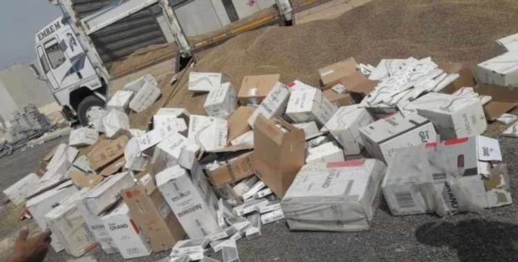 Ceylapınar'da 37 bin 500 paket kaçak sigara ele geçirildi