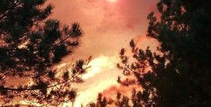 Amanoslardaki orman yangını kontrol alınmaya çalışılıyor
