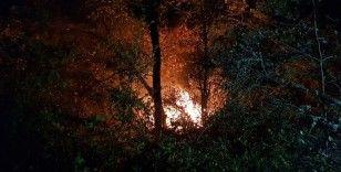 Karabük'teki orman yangını kontrol altına alındı
