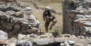 Bebek katili YPG/PKK'ya yaz darbesi