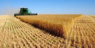 Tarım-ÜFE yıllık yüzde 17,36, aylık yüzde 0,22 arttı