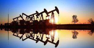 UEA: Petrolün görünümü vaka sayılarının artmasıyla kırılganlaşıyor
