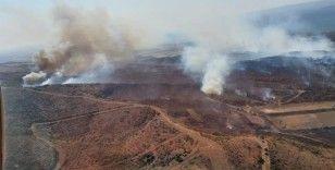 Gelibolu'da yine orman yangını
