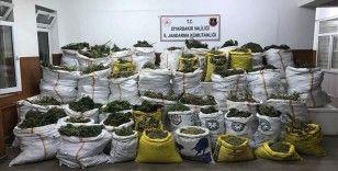Diyarbakır'da 669 kilo 60 gram esrar, 510 bin kök Hint keneviri ele geçirildi