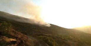 Elazığ'daki orman yangını 30 saatte kontrol altına alındı