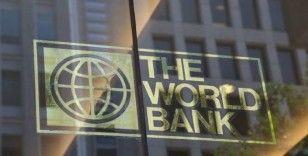 Reinhart: Ekonomik toparlanma 5 sene sürebilir
