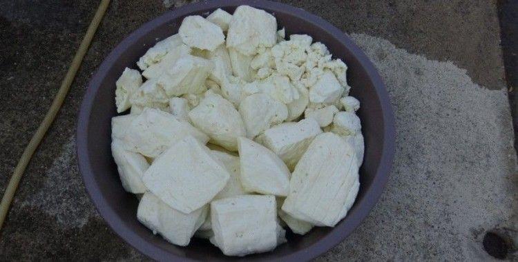 Bu peynir bir yılda sofraya geliyor
