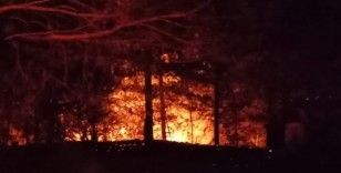 Kastamonu'da ağaçlık alanda çıkan yangın 3 saatte söndürülebildi