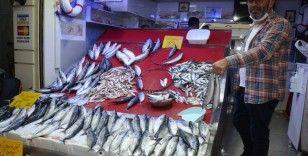 Plamut balığı 10 liraya geriledi