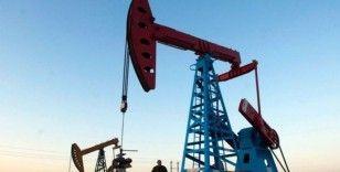 Petrol 'virüs' endişeleri ile sert düşüşün ardından yatay seyretti