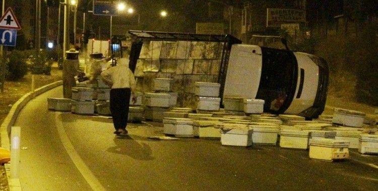 Kızgın arılar ve kovanlar yolu trafiğe kapadı