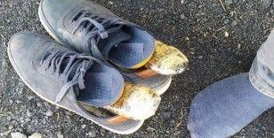 Uyuşturucu, ayakkabılarının içinden çıktı